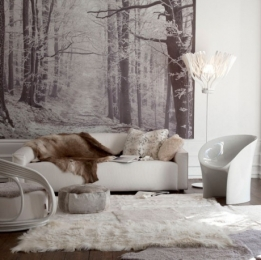 cosy_winter_inspired_living_room_92318300