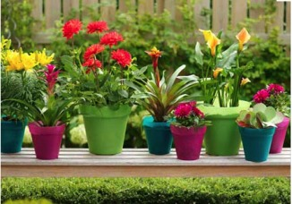 balcony-decoration-ideas-pots3