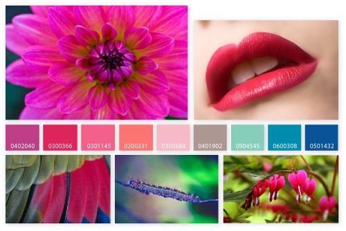 SS-2013-Hot-petals