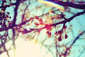 Έμπνευση απο την άνοιξη! – Get inspired by springpastels!