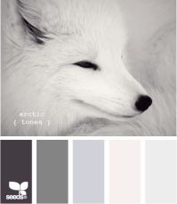 palete1