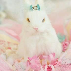 Πασχαλινά παστέλ / EasterPastels