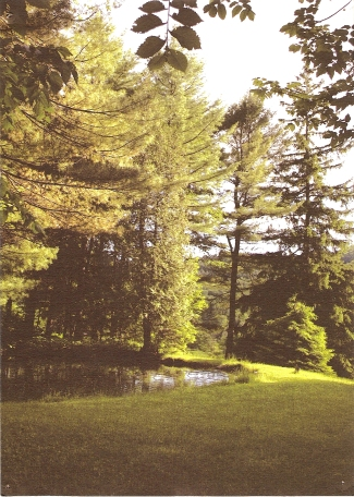 Nature-History-Camp1