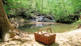 Picnic_Waterfall_web_796x452