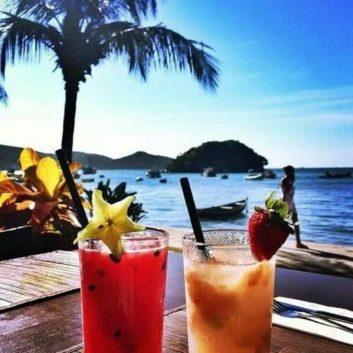 beach-cocktail-palm-trees-sea-Favim.com-1878576-1024x1024