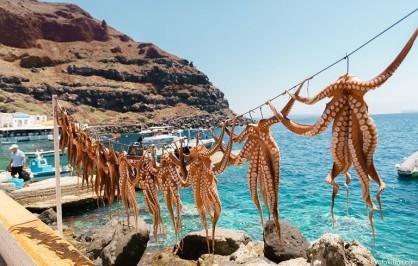 santorini_amoudi_octopus