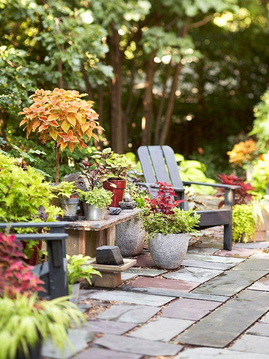 outdoor garden 2