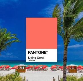 Pantone color of the year2019
